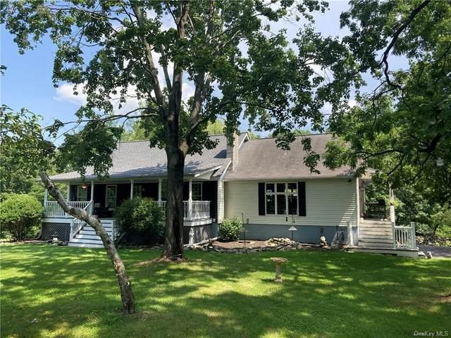 3 Beth Drive, Marlboro, NY 12542 (MLS #H6130315) :: Corcoran Baer & McIntosh