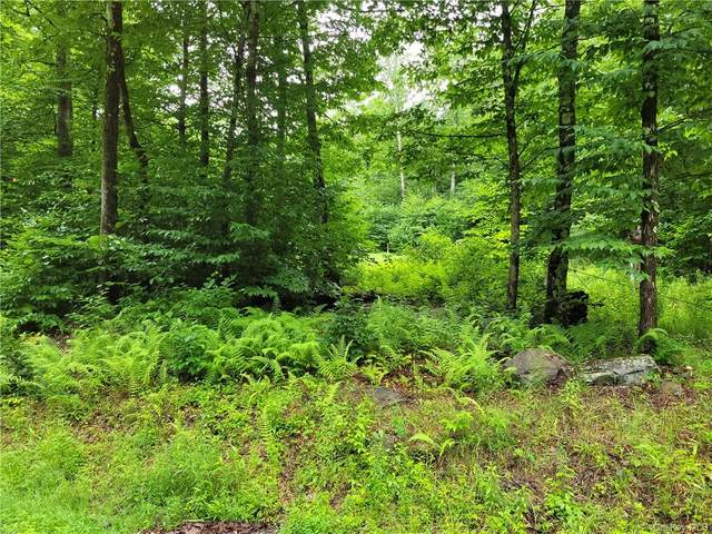 S Maplewood Road, Monticello, NY 12701 (MLS #H6130323) :: Kendall Group Real Estate   Keller Williams