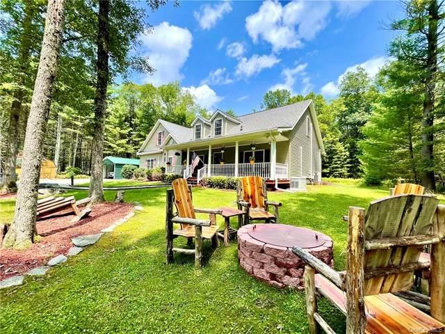 98 Reyer Road, Narrowsburg, NY 12764 (MLS #H6130343) :: Kendall Group Real Estate | Keller Williams