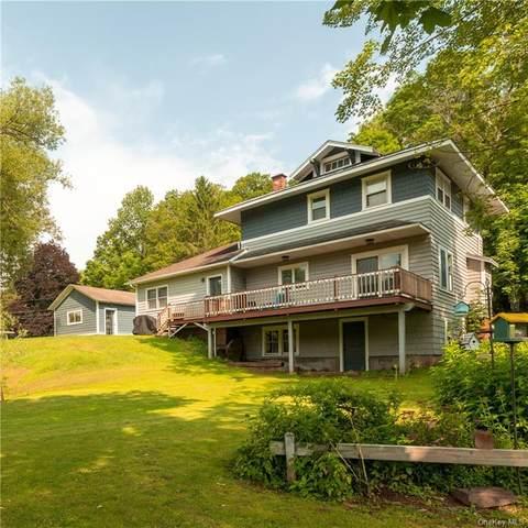 36 Delaware Avenue, Delhi, NY 13753 (MLS #H6130369) :: Kendall Group Real Estate | Keller Williams