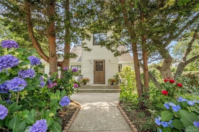 11 Francis Place, Pleasantville, NY 10570 (MLS #H6130385) :: Mark Seiden Real Estate Team