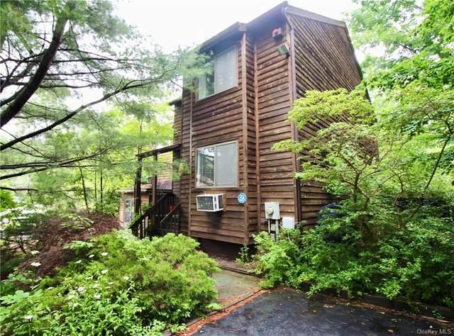 44 Alpine Drive, Woodridge, NY 12789 (MLS #H6130389) :: Howard Hanna   Rand Realty