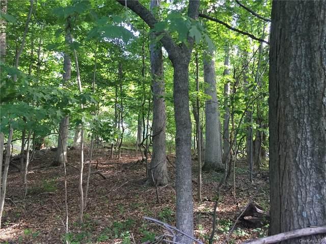 29 Joshua Hobby - Lot 1 Lane, Pound Ridge, NY 10576 (MLS #H6130391) :: Mark Boyland Real Estate Team