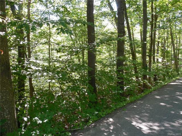 43 Traver Hollow Road, Boiceville, NY 12412 (MLS #H6130409) :: The Clement, Brooks & Safier Team