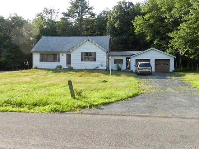 375 Sherman Road, Ellenville, NY 12428 (MLS #H6130429) :: Kendall Group Real Estate | Keller Williams