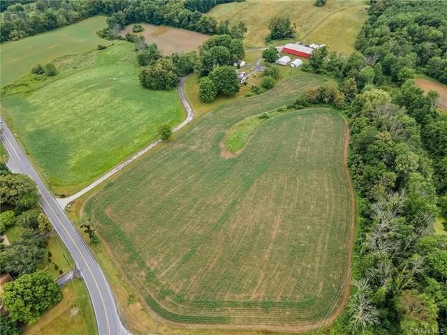 215 Freedom Road, Pleasant Valley, NY 12569 (MLS #H6130457) :: Carollo Real Estate
