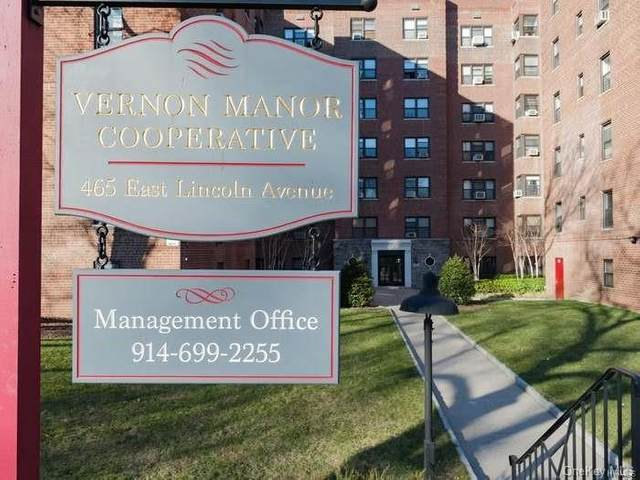 465 E Lincoln Ave Avenue #512, Mount Vernon, NY 10552 (MLS #H6130555) :: Howard Hanna   Rand Realty