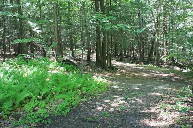 Lower Trinity Pass Road, Pound Ridge, NY 10576 (MLS #H6130576) :: Mark Boyland Real Estate Team