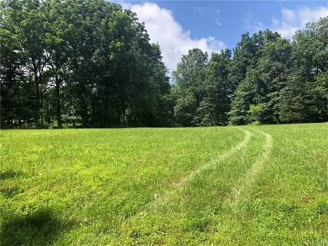 Wallkill Avenue, Wallkill, NY 12589 (MLS #H6130682) :: Kendall Group Real Estate | Keller Williams