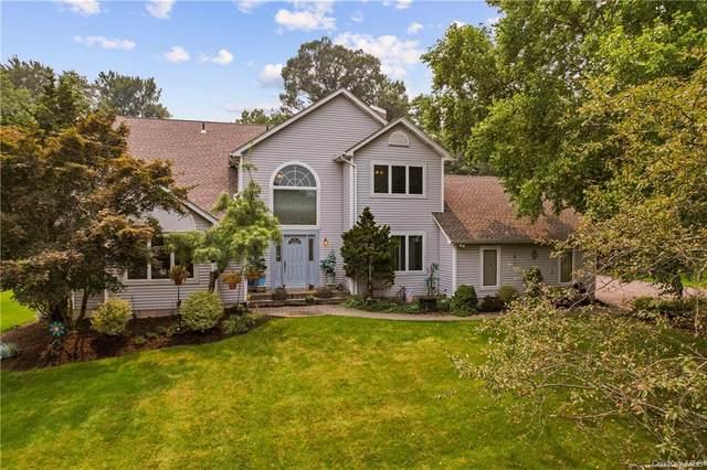 157 Leber Road, Blauvelt, NY 10913 (MLS #H6130709) :: Signature Premier Properties