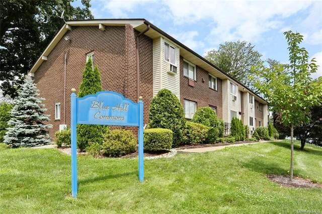 5 Blue Hill Commons Drive C, Orangeburg, NY 10962 (MLS #H6130726) :: McAteer & Will Estates | Keller Williams Real Estate