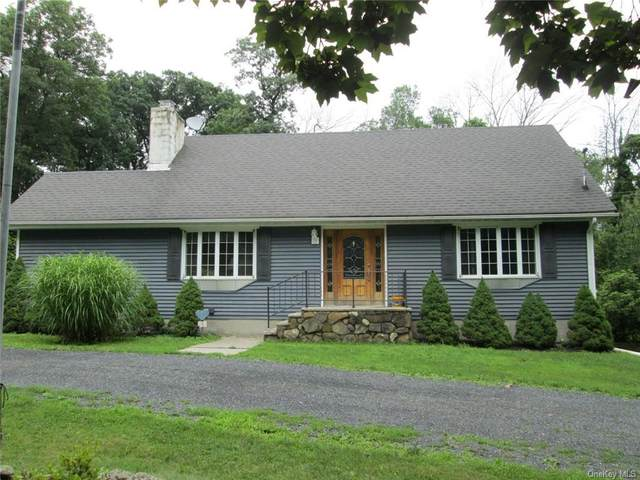 20 Youngs Lane, Bloomingburg, NY 12721 (MLS #H6130732) :: Kendall Group Real Estate   Keller Williams