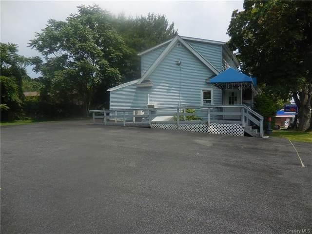 994 Little Britain Road, New Windsor, NY 12553 (MLS #H6130775) :: Howard Hanna Rand Realty