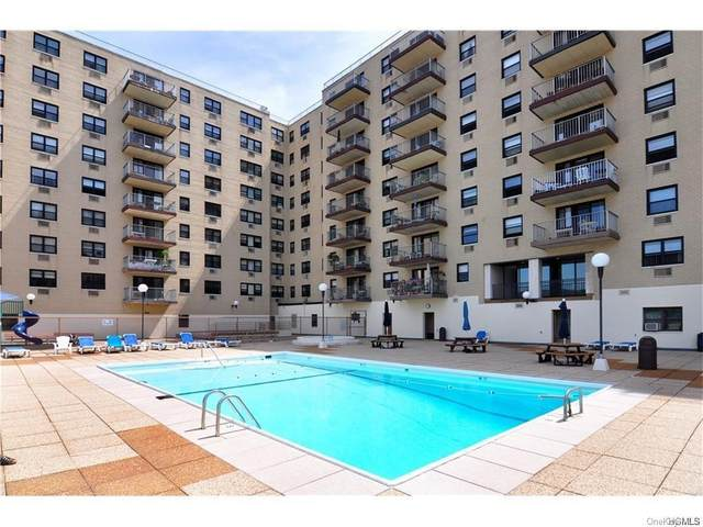 1085 Warburton Avenue #111, Yonkers, NY 10701 (MLS #H6130809) :: The Clement, Brooks & Safier Team