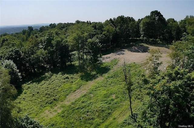 First Street Lot 1, Milton, NY 12547 (MLS #H6130976) :: Kendall Group Real Estate | Keller Williams