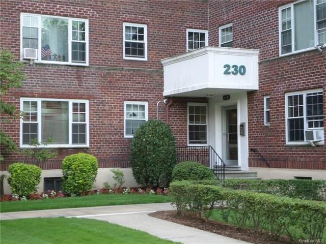 230 Pelham Road 3D, New Rochelle, NY 10805 (MLS #H6130980) :: Howard Hanna | Rand Realty