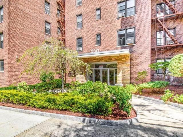 530 Riverdale Avenue 3K, Yonkers, NY 10701 (MLS #H6131024) :: Howard Hanna Rand Realty