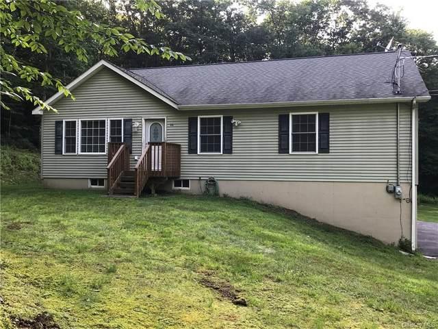 26 Finkle Road, Wurtsboro, NY 12790 (MLS #H6131052) :: Kendall Group Real Estate | Keller Williams