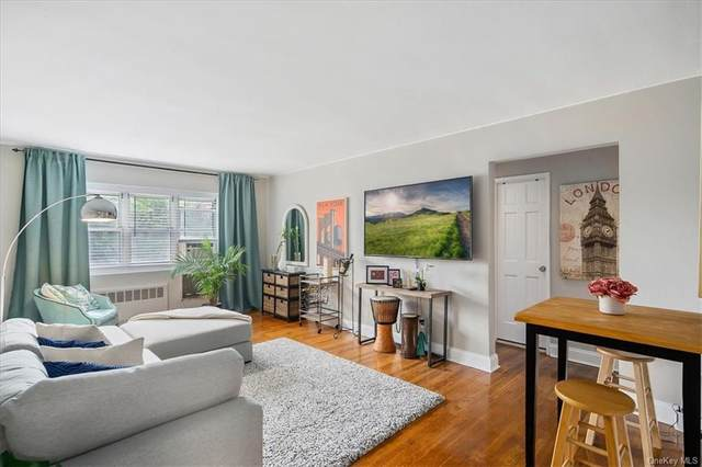 179 Drake Lane 1L, New Rochelle, NY 10805 (MLS #H6131058) :: Howard Hanna Rand Realty