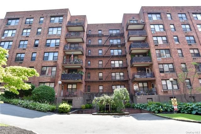 119 S Highland Avenue 3B, Ossining, NY 10562 (MLS #H6131068) :: Carollo Real Estate
