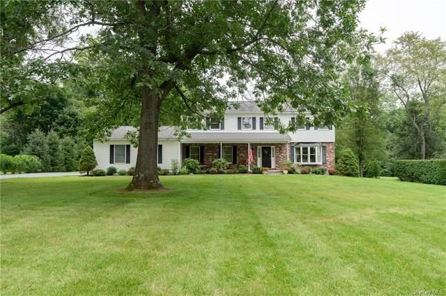 73 Saddle Ridge Drive, Hopewell Junction, NY 12533 (MLS #H6131140) :: Howard Hanna Rand Realty