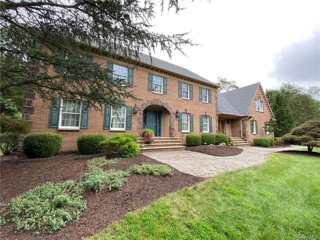 14 Scenic Pond Drive, Warwick, NY 10990 (MLS #H6131216) :: Cronin & Company Real Estate