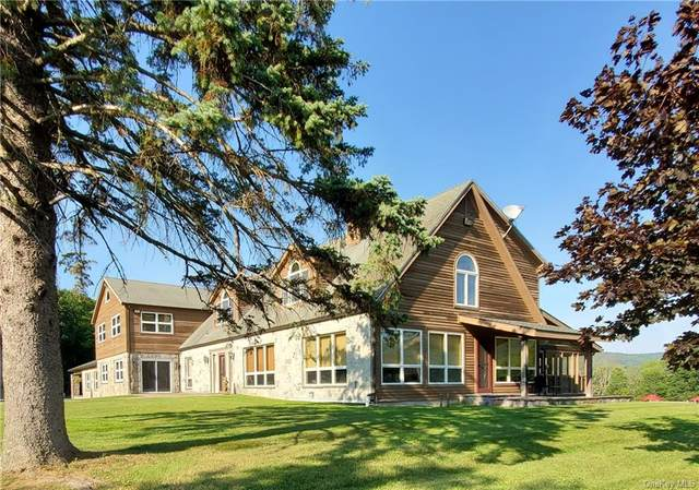 98 Van Aken Road, Sundown, NY 12740 (MLS #H6131223) :: Cronin & Company Real Estate