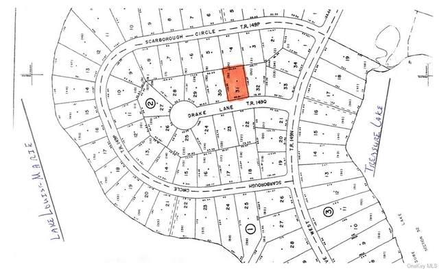Drake Lane, Rock Hill, NY 12775 (MLS #H6131224) :: Carollo Real Estate