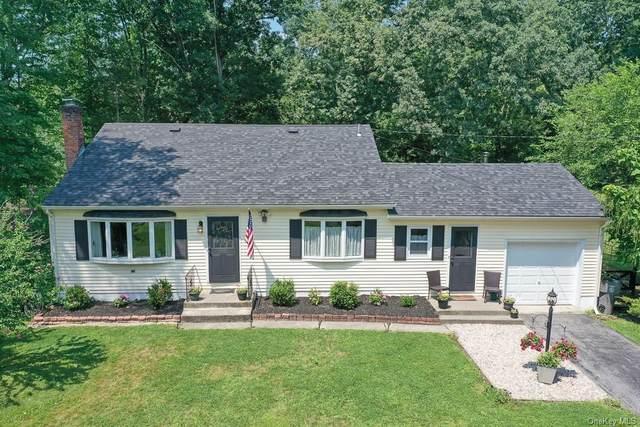 71 Sleight Plass Road, Poughkeepsie, NY 12603 (MLS #H6131262) :: Carollo Real Estate