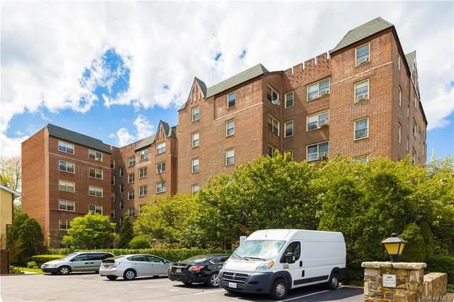 151 Centre Avenue 3C, New Rochelle, NY 10805 (MLS #H6131370) :: Carollo Real Estate