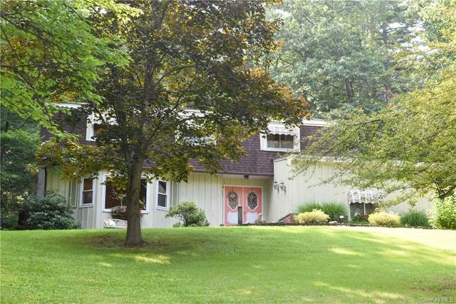 11 Diane Drive, Ellenville, NY 12428 (MLS #H6131429) :: Kendall Group Real Estate | Keller Williams