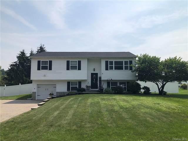 141 Heather Circle, Newburgh, NY 12550 (MLS #H6131440) :: Carollo Real Estate
