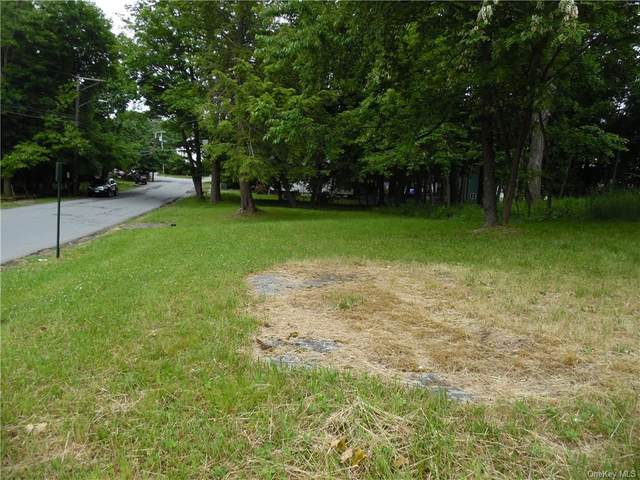 Fulton Avenue, Monticello, NY 12701 (MLS #H6131446) :: Kendall Group Real Estate   Keller Williams