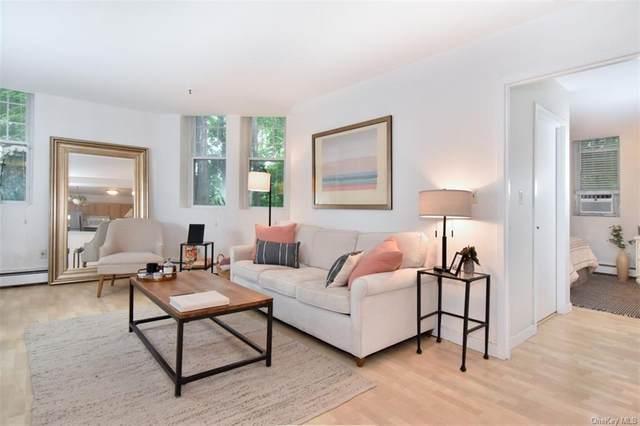 100 Clarewood Drive 1L, Hastings-On-Hudson, NY 10706 (MLS #H6131456) :: Goldstar Premier Properties