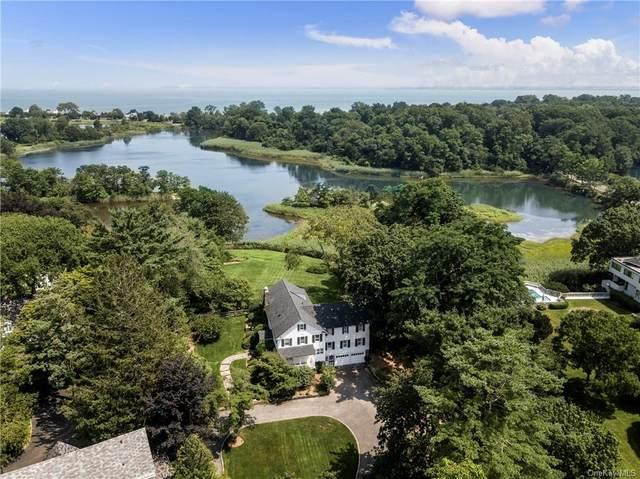 164 Kirby Lane, Rye, NY 10580 (MLS #H6131483) :: Cronin & Company Real Estate