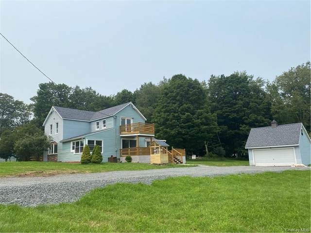 767 County Road 114 Road, Cochecton, NY 12726 (MLS #H6131489) :: Kendall Group Real Estate | Keller Williams