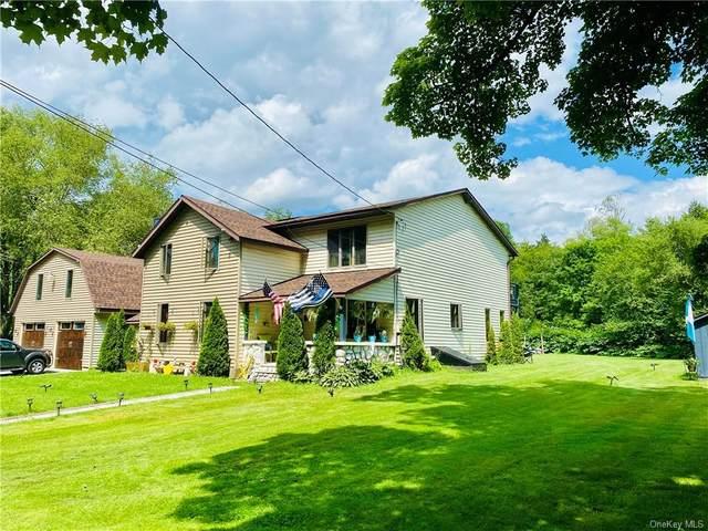 89 Old Liberty Road, Livingston Manor, NY 12758 (MLS #H6131490) :: Signature Premier Properties