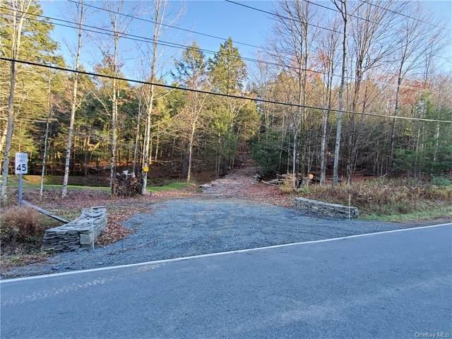 1500 County Route 56, Fallsburg, NY 12733 (MLS #H6131512) :: Howard Hanna   Rand Realty