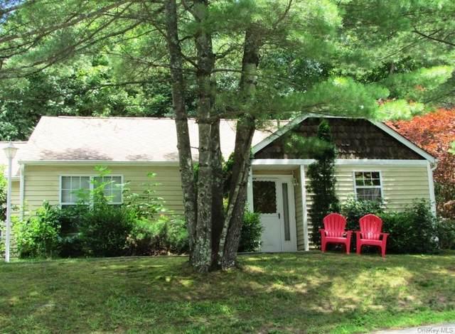 48 Hidden Ridge Drive, Monticello, NY 12701 (MLS #H6131518) :: Carollo Real Estate