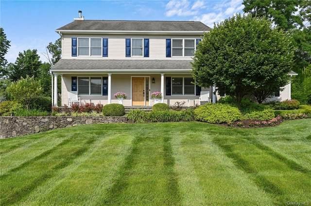 55 Pleasant Hill Road, New Windsor, NY 12553 (MLS #H6131558) :: Howard Hanna | Rand Realty