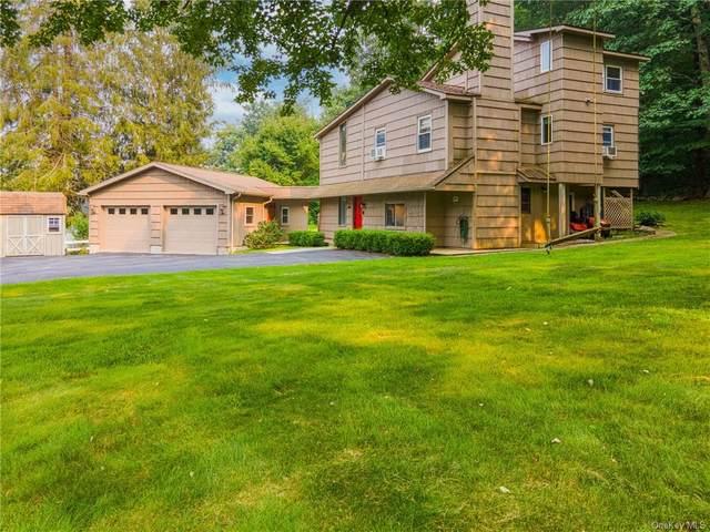 23 Allyn Way, Stormville, NY 12582 (MLS #H6131599) :: Carollo Real Estate