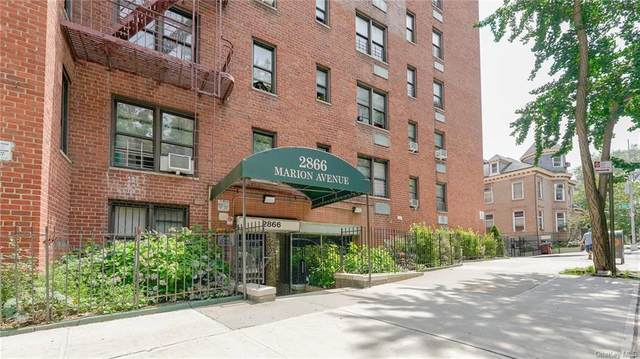 2866 Marion Avenue 2B, Bronx, NY 10458 (MLS #H6131647) :: Carollo Real Estate