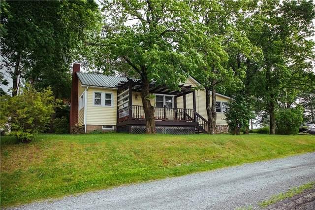 137 E Broadway, Monticello, NY 12701 (MLS #H6131713) :: Mark Boyland Real Estate Team