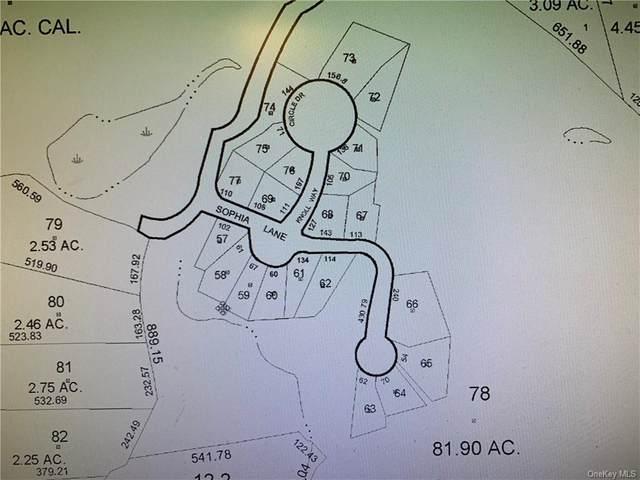 18 Sophia Lane, Brewster, NY 10509 (MLS #H6131720) :: Carollo Real Estate