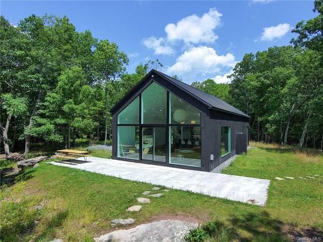 385 Evergreen Lane, Narrowsburg, NY 12764 (MLS #H6131796) :: Kendall Group Real Estate | Keller Williams