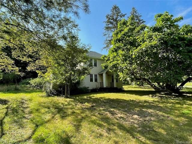 1556 Shandelee Road, Livingston Manor, NY 12758 (MLS #H6131810) :: Team Pagano
