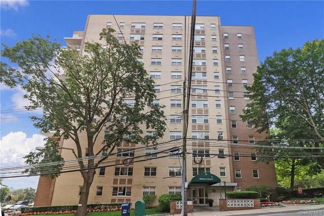 30 Lake Street 8I, White Plains, NY 10603 (MLS #H6131813) :: McAteer & Will Estates | Keller Williams Real Estate