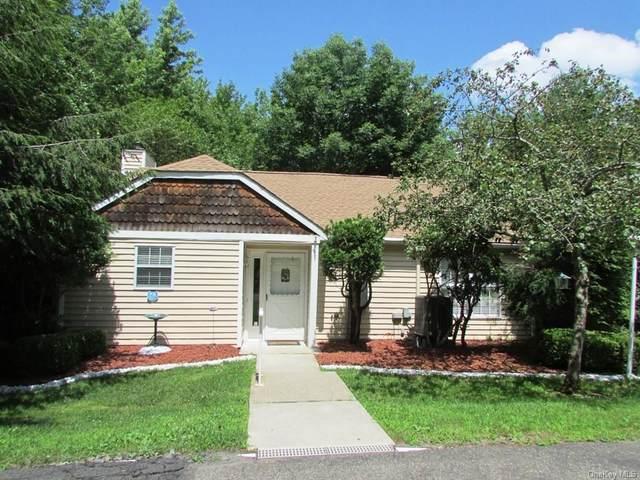 197 Hidden Ridge Drive, Monticello, NY 12701 (MLS #H6131885) :: Carollo Real Estate