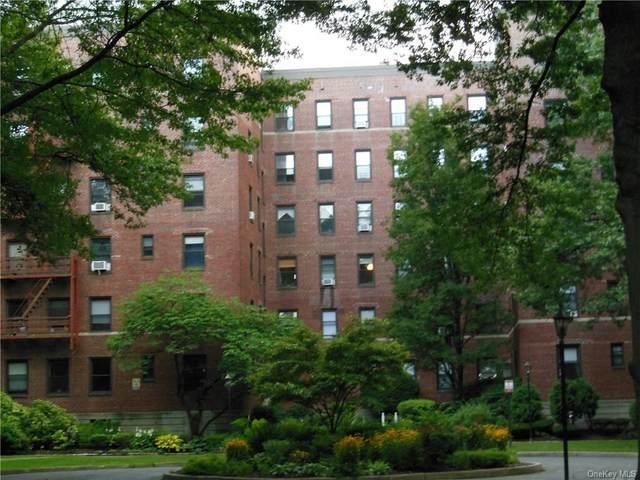 224 Larchmont Acres West 4B, Larchmont, NY 10538 (MLS #H6131900) :: Frank Schiavone with Douglas Elliman