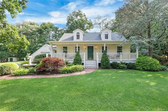 3 Brigitte Court, Airmont, NY 10901 (MLS #H6132120) :: Carollo Real Estate